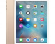 rfb-ipad-mini3-gold-wifi-2014